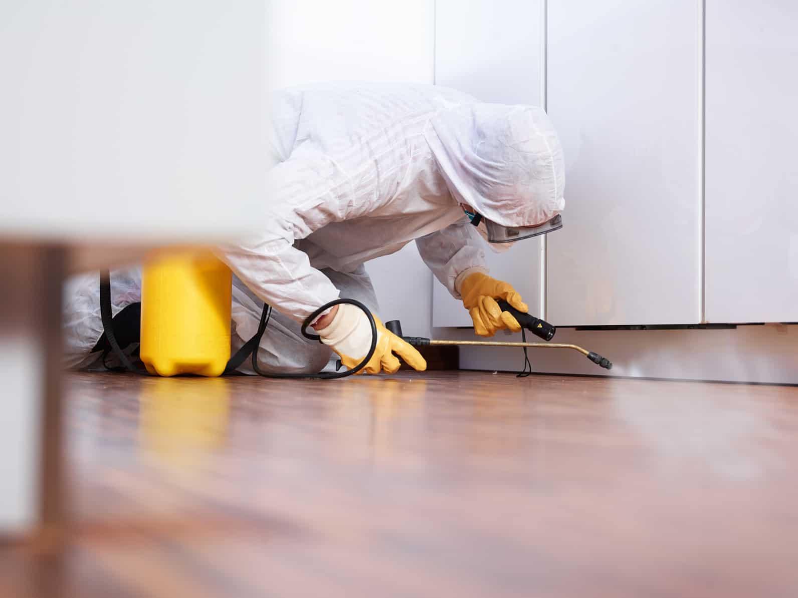 Usługi sprzątania dla gastronomii