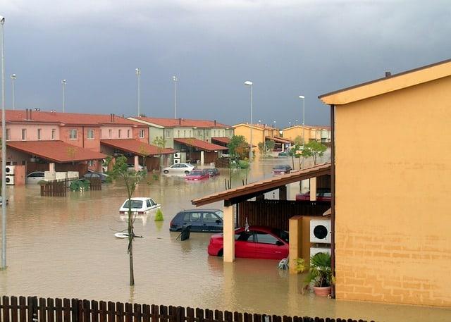 Niszczenie pleśni po powodziach